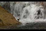 Fotograma del documental A Ruta da pedra e da auga, de Federico de la Peña